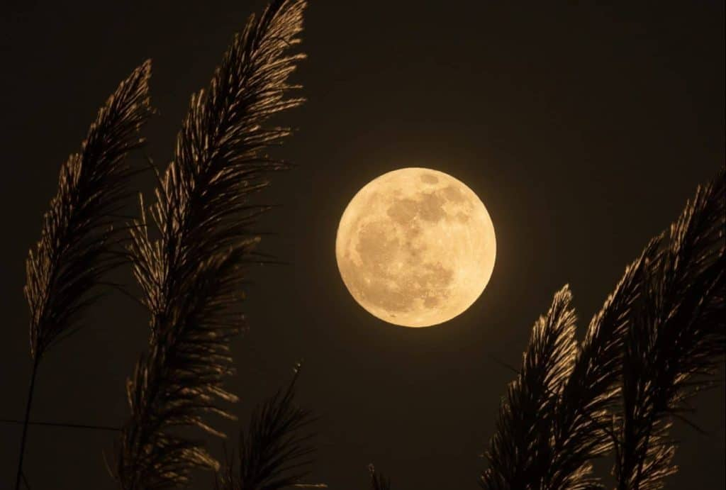 This Year's Biggest And Brightest Supermoon Happens Tonight