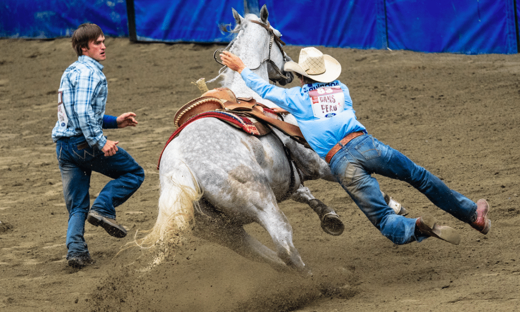 The 2021 Houston Livestock Show And Rodeo Has Officially Been Cancelled