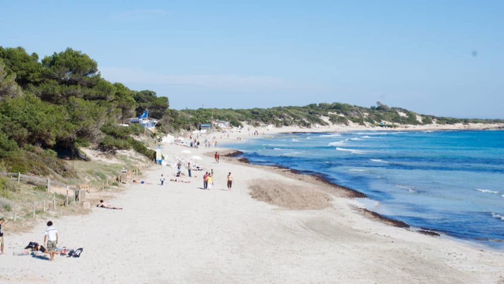 Las Salinas Beach: Golden Sands and Crystal Clear Water