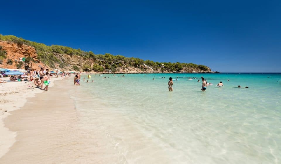 Cala Llenya: a golden sandy beach, ideal for those who love the quiet side of Ibiza