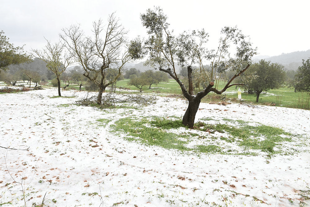 Aemet weather forecast: sudden temperature drop and SNOW WARNING in Ibiza and Spain