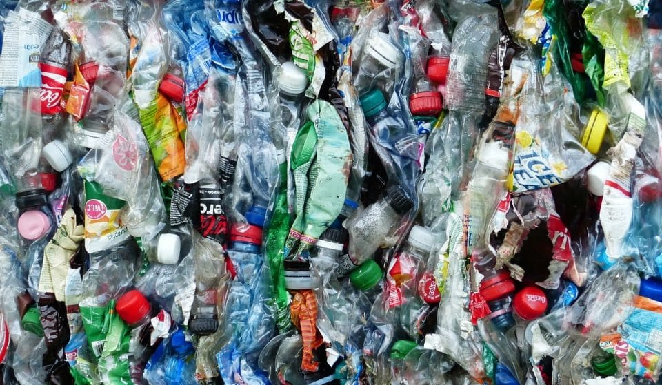 #Trashtag: the new challenge that is changing the world arrives in Ibiza
