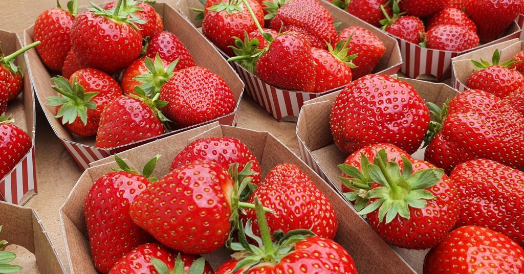 You Can Pick Your Own Strawberries At This Lovely Farm Near Copenhagen