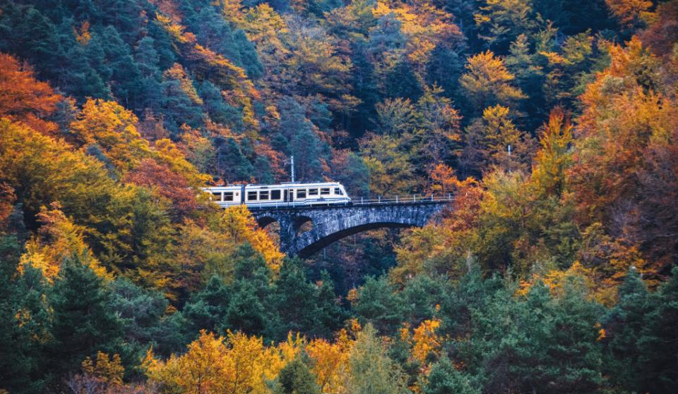 This European 'Foliage Train' Makes For A Colourful Autumn Escape