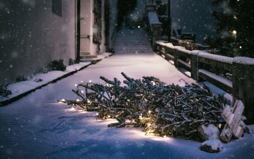 Es schneit in der Domstadt: unsere Highlights von Köln im Schnee