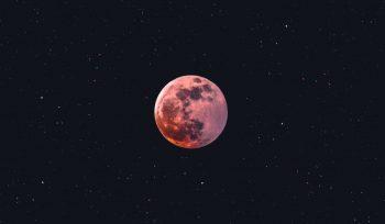 """""""Supermond"""" 2021: Am 27. April erhellt ein rosa Vollmond den nächtlichen Himmel."""