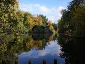 5 schöne Seen im Kölner Umland