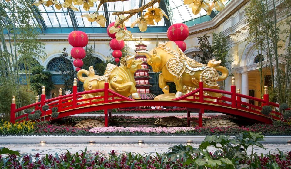 Celebrate The Year Of The Ox At Bellagio Conservatory's Lunar New Year Display