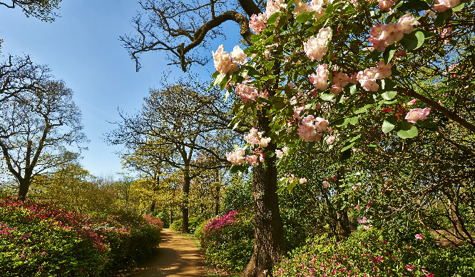 Over 200 Secret Gardens In London Will Open To The Public This Weekend