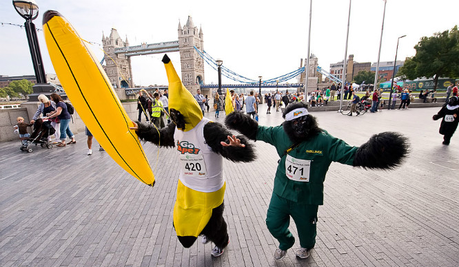 London's Gone Bananas! Hundreds Of Gorillas Will Run Through The City This Weekend