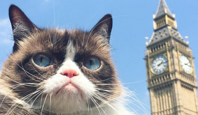 10 Signs That You Just Weren't Made To Be A Londoner