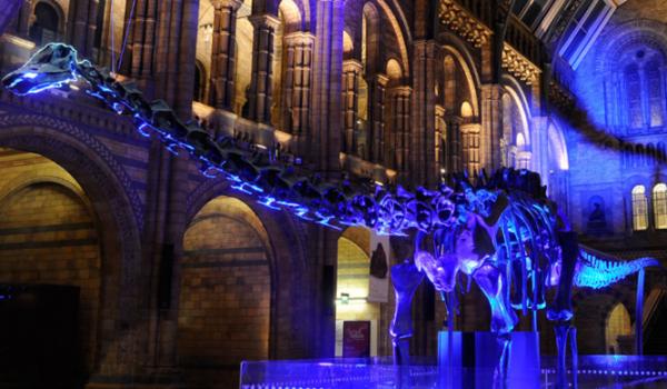 dippy-diplodocus-dinosaur-natural-history-museum-london