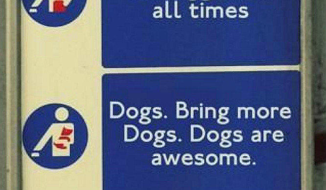21 Mundane Moments Londoners Shouldn't Get Excited By (But Do Anyway)