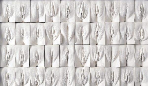 wall-of-vaginas