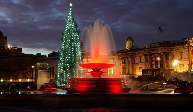 Londoners Are Hating On Trafalgar Square's Christmas Tree!