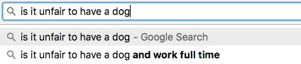 dog-london-google-funny