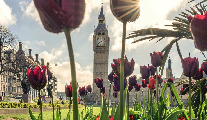 Literally Just 17 Photos Of London Looking Lovely In The Spring