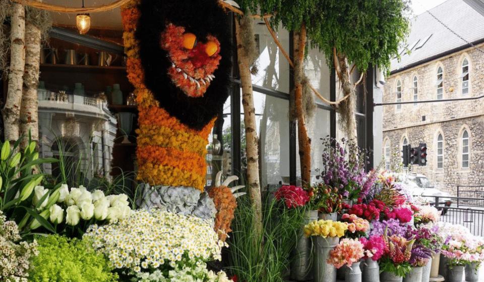 19 Beautiful Shopfronts From Belgravia In Bloom
