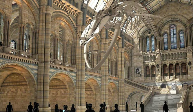The Natural History Museum's Blue Whale Replacement For Dippy The Dinosaur Is Coming Soon