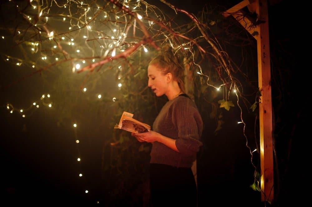 literary-narnia