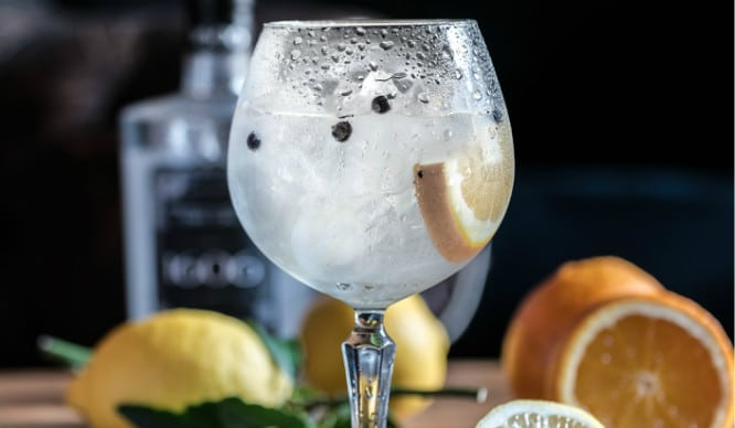 We've Teamed Up With Gin Festival To Bring You The Ultimate Summer Of Gin