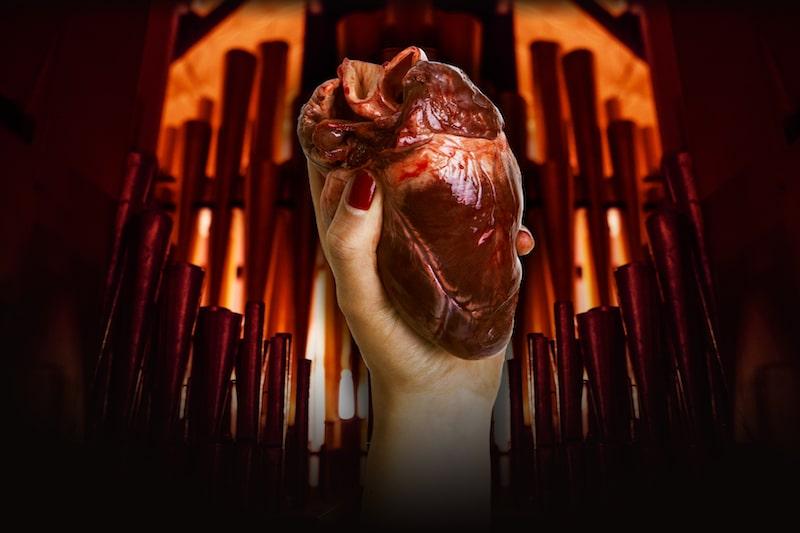 Organs Meet Organs At An Offall-y Odd Pop-Up