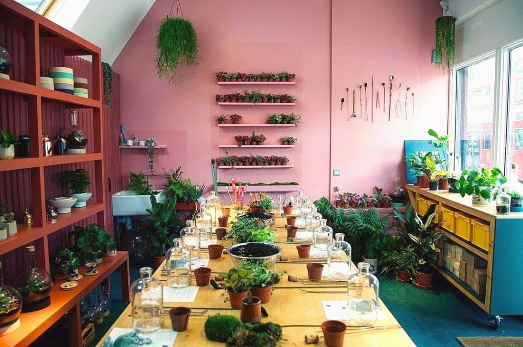 London's First Terrarium Shop Is As Picture-Worthy As You'd Expect