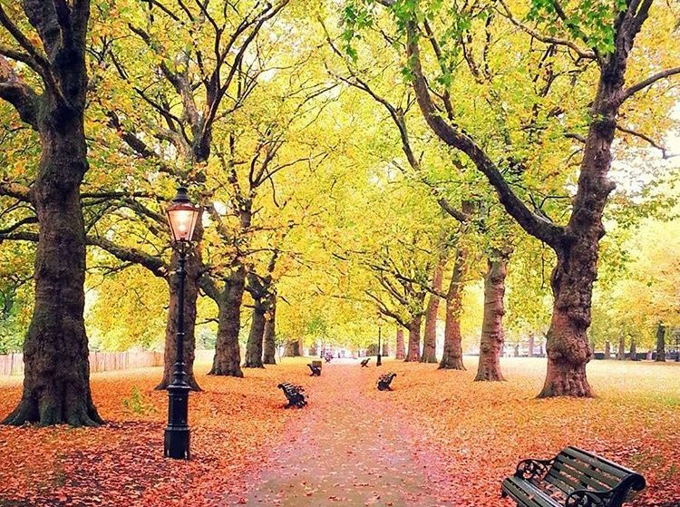 14 Things Every Londoner Is Thinking Now That Autumn Is ACTUALLY Here