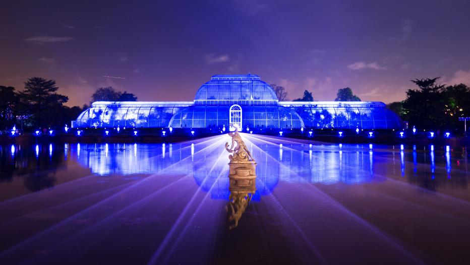 Kew's Magical Christmas Lights Trail Will Bring One Million Lights To The Gardens