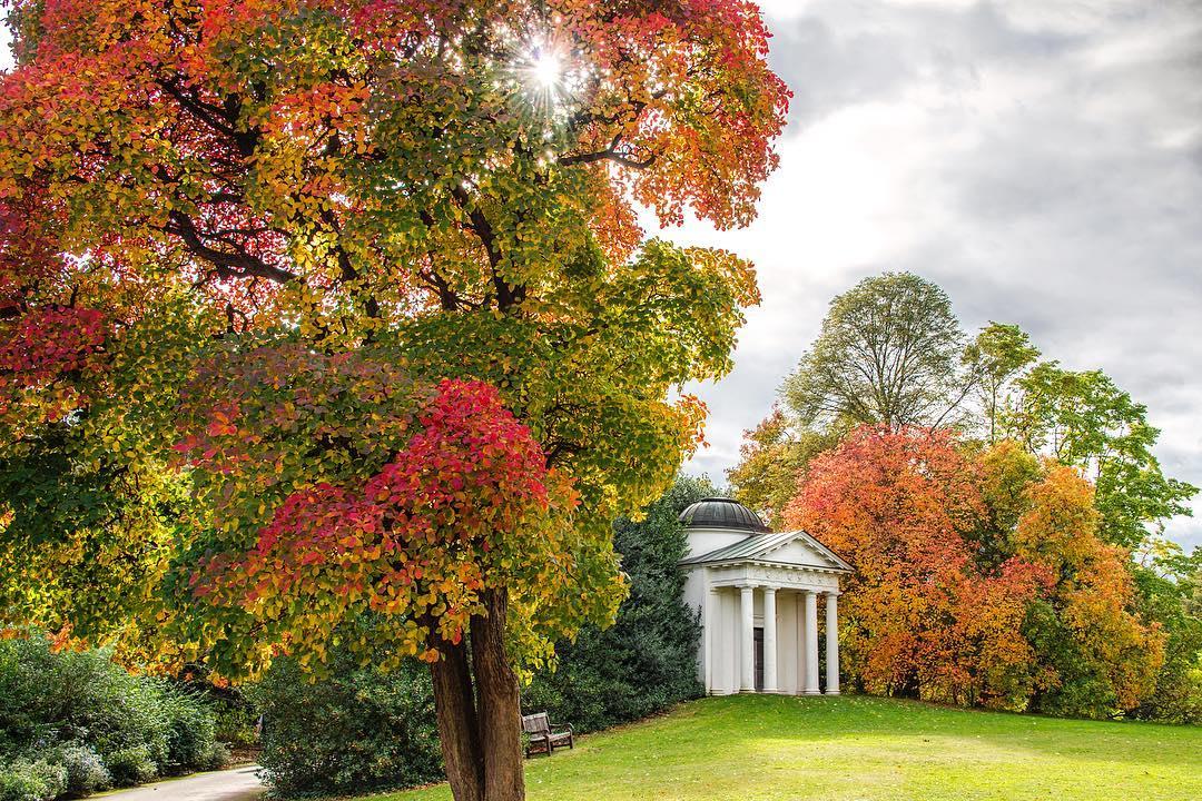 Kew Gardens in the autumn