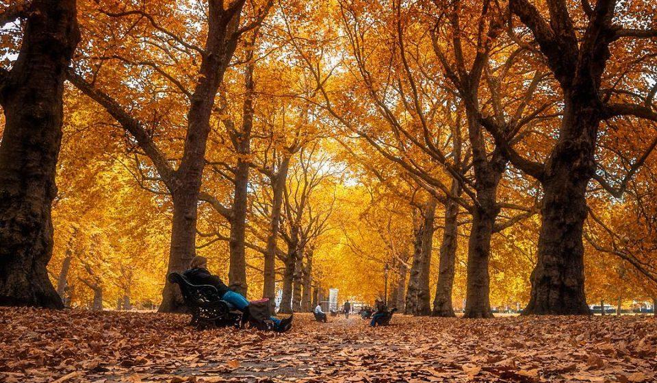 28 Times London Got Drop Dead Gorgeous This Autumn