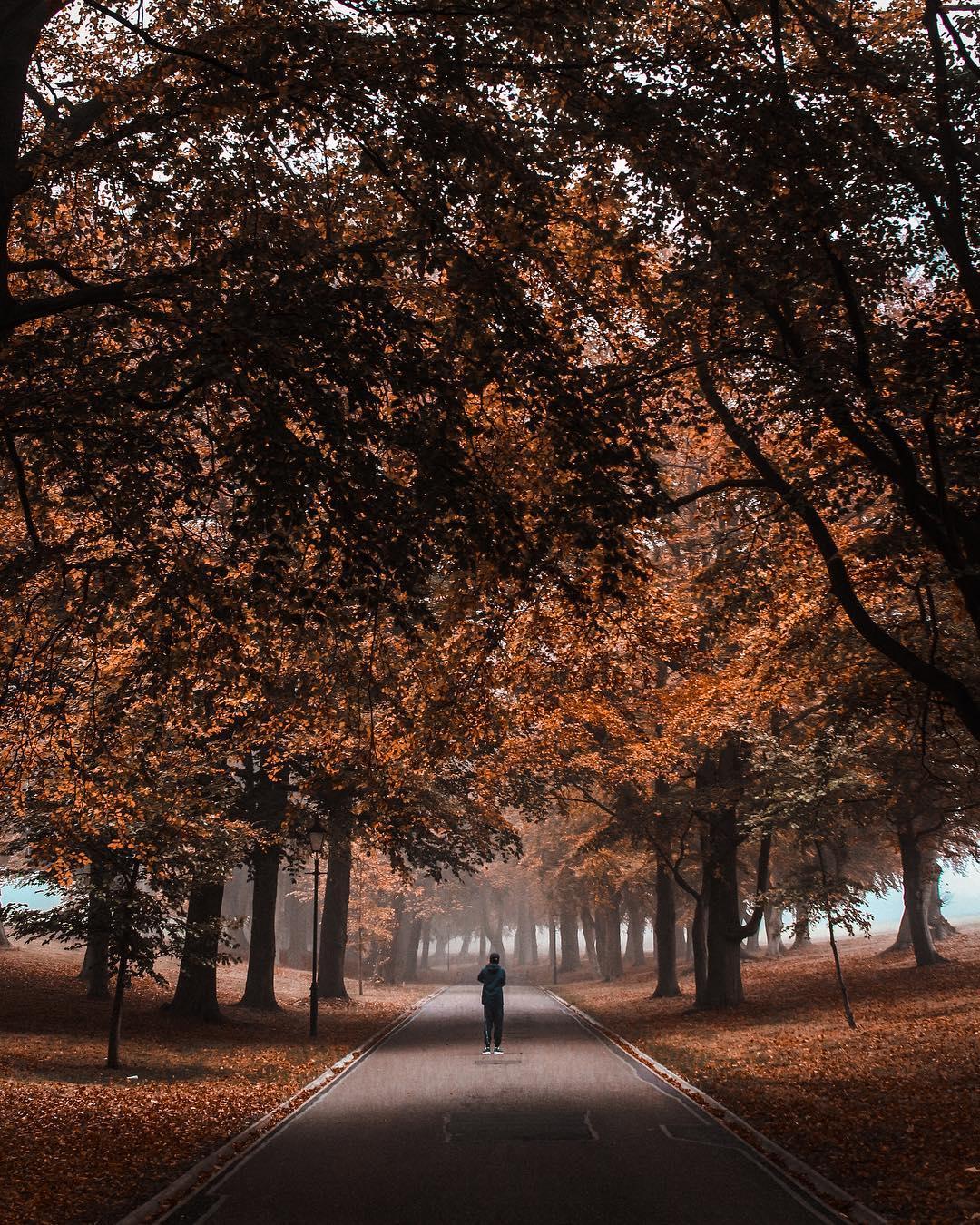 London in the autumn photos, Harpenden