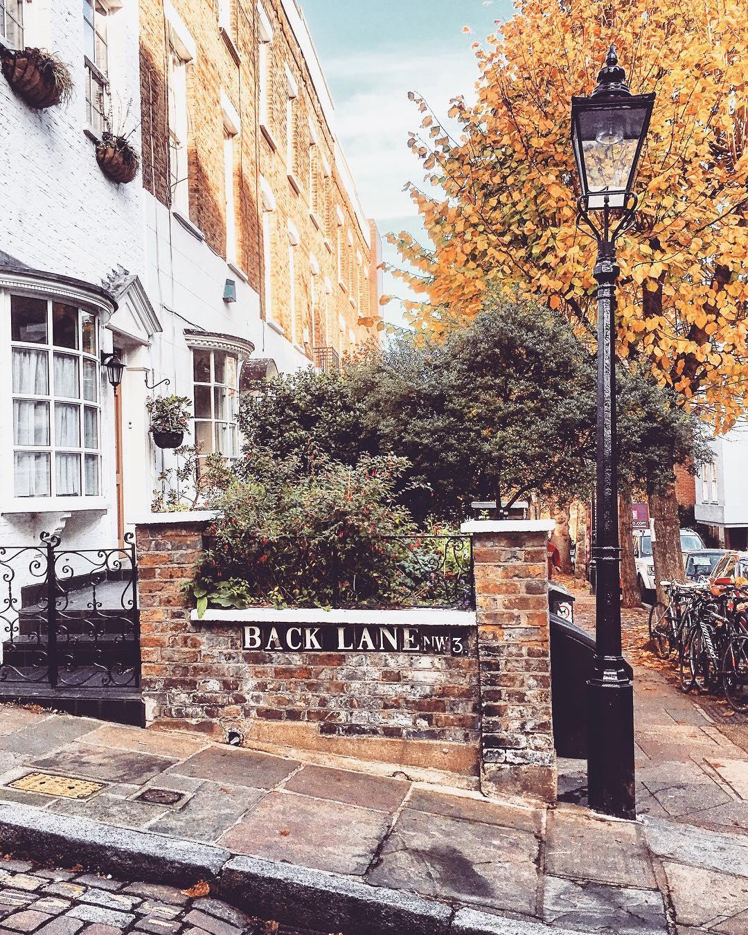 London autumn photos - Hampstead