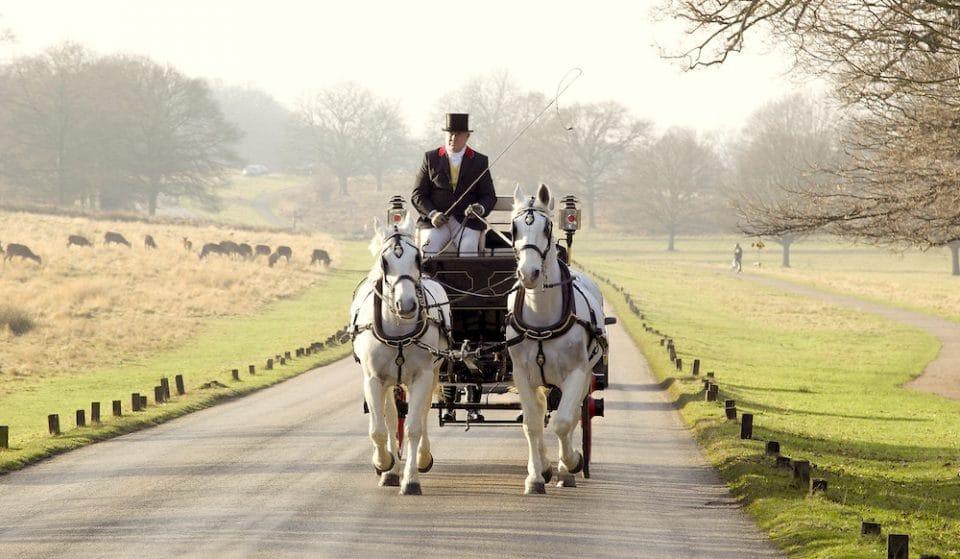Ride A Horse Drawn Carriage Through Richmond Park Like A Fancy Pants