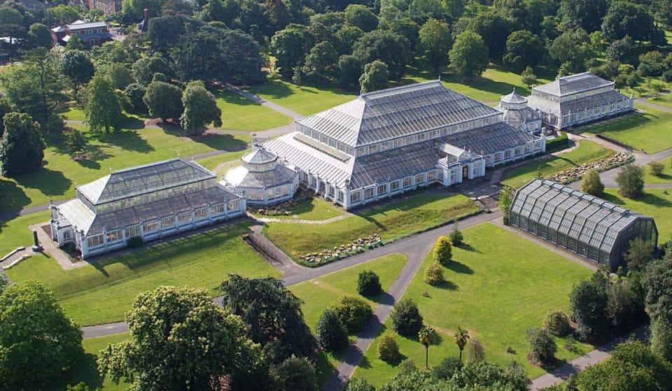 Inside Kew Garden's Massive, Magnificent Victorian Glasshouse