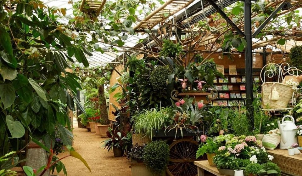 This Gorgeous Garden Centre Is Perfect For A Sunny Day Out • Petersham Nurseries