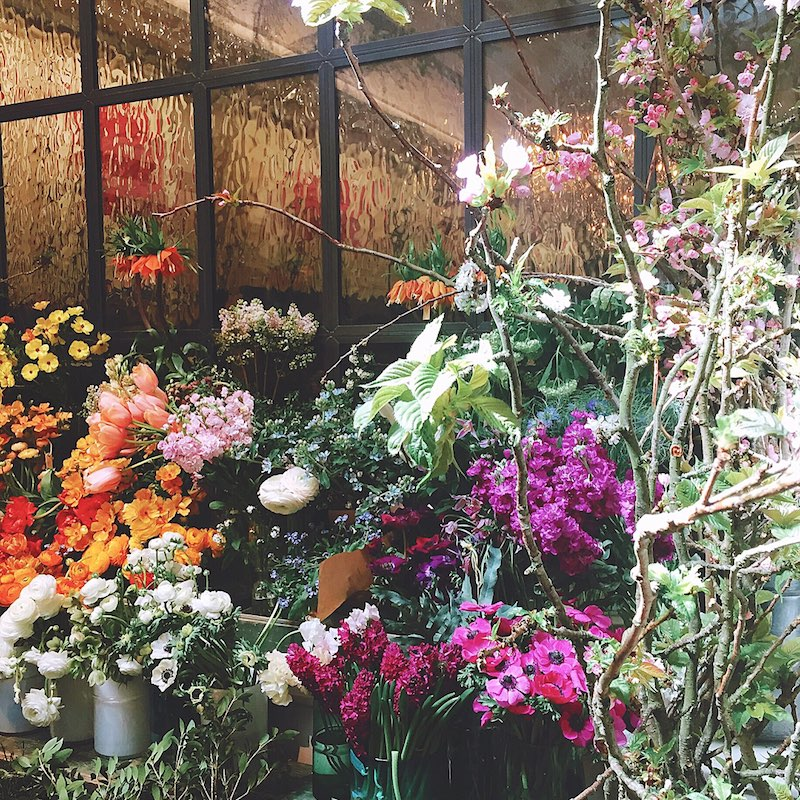 Petersham Florist X