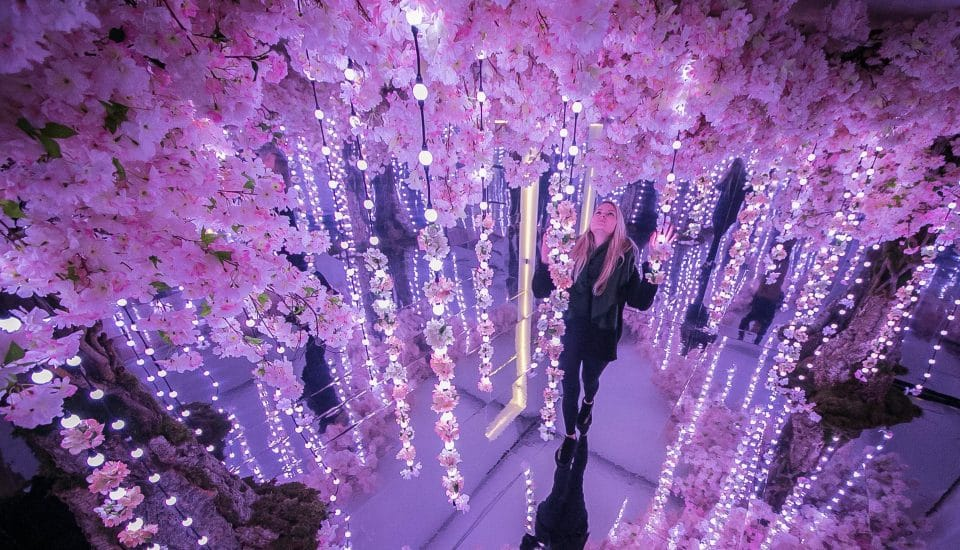 A Stunning Exhibition Has Opened In London And It's Every Instagrammer's Dream