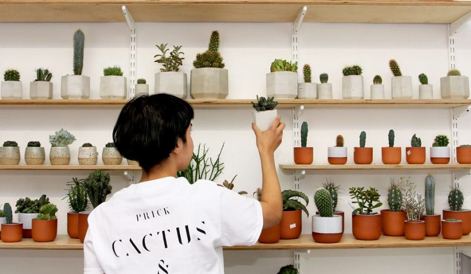 This Beautiful Dalston Shop Is A Cavern Of Cacti • Prick