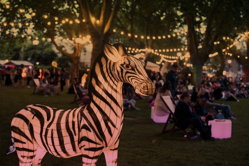 london-zoo-nights-1