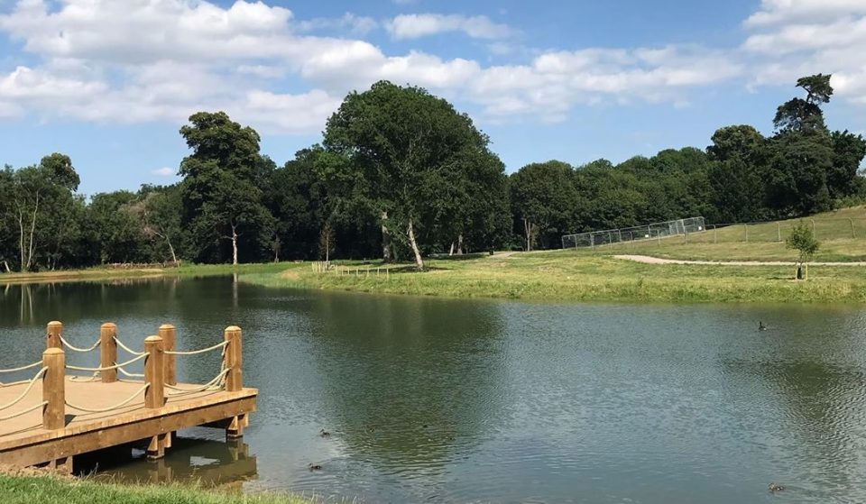 South London's Beautiful New Swimming Lake Opens This July