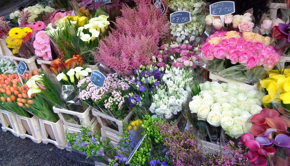 This Fabulous Floral Market Is A Smashing Way To Spend A Sunday • Columbia Road Flower Market