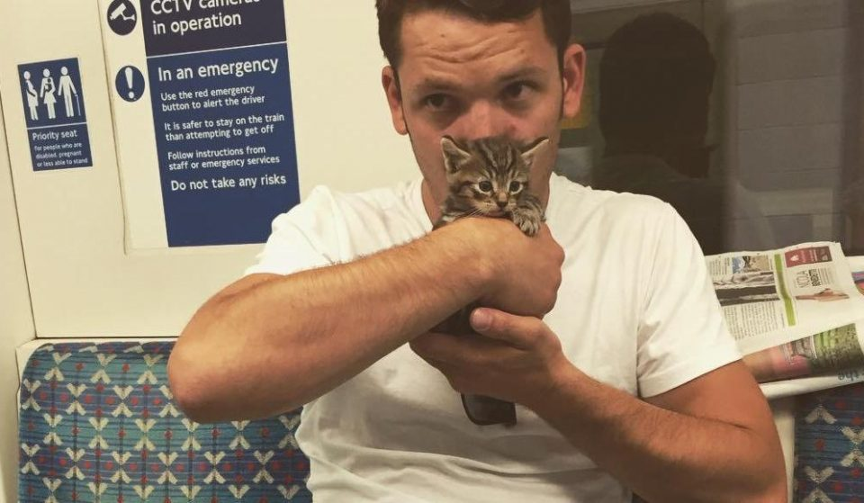 A Just-Rescued Kitten Took A Tube Journey To His New Home