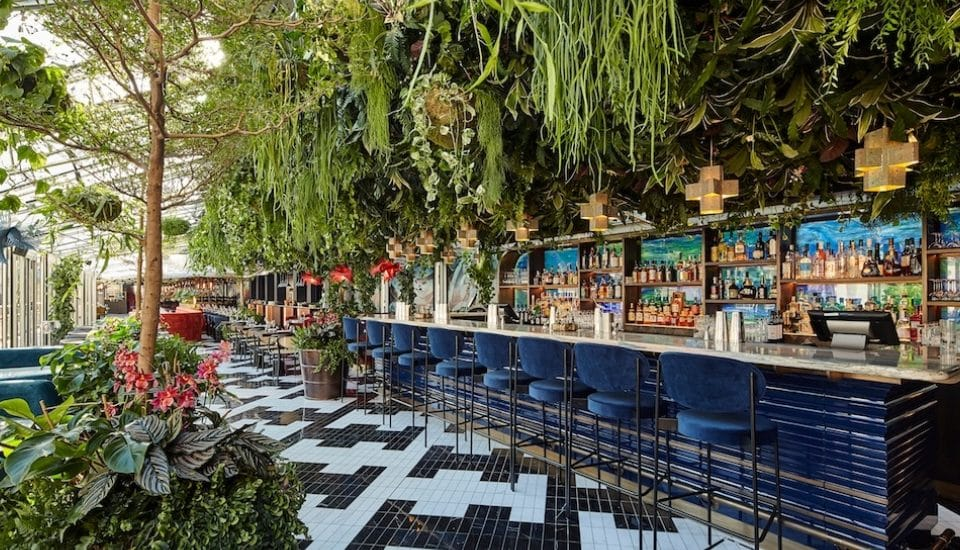 This Spectacular Fusion Restaurant Is A Gorgeous Overgrown Jungle • SUSHISAMBA Covent Garden