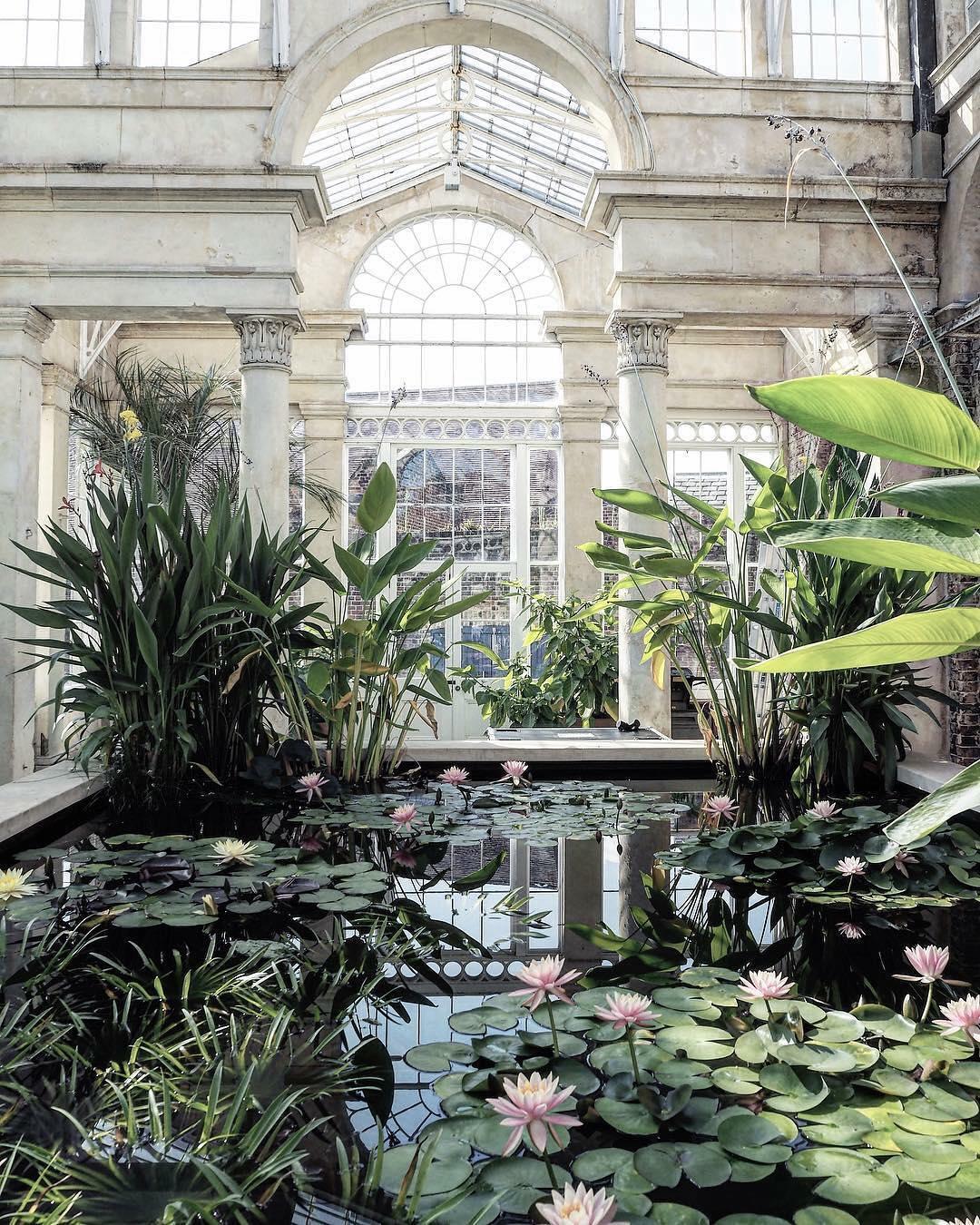 syon-park-conservatory