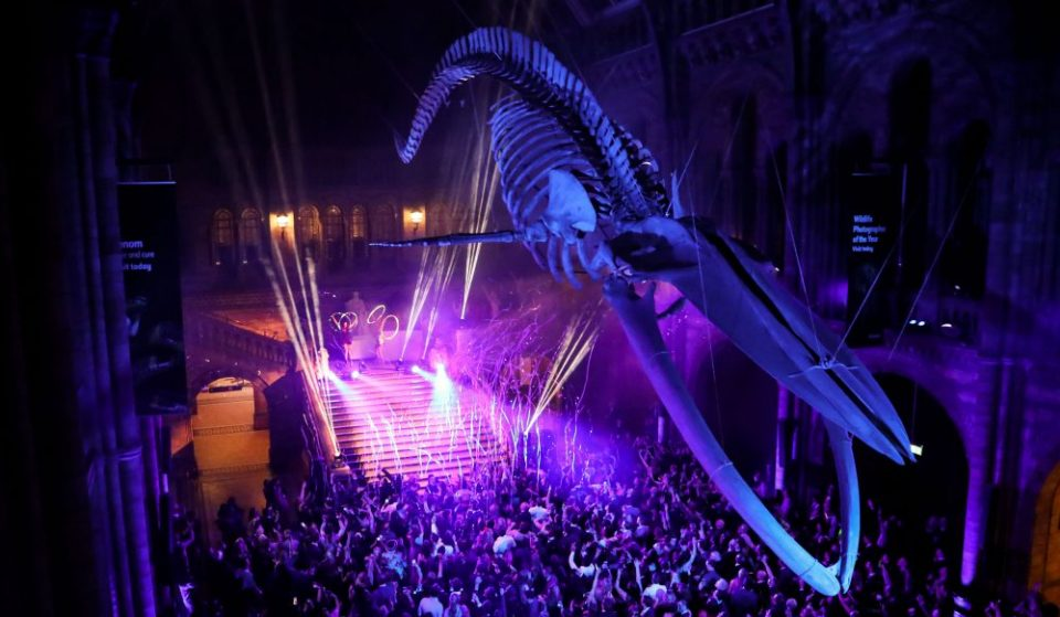 The Natural History Museum Are Throwing An Epic New Year's Eve Bash