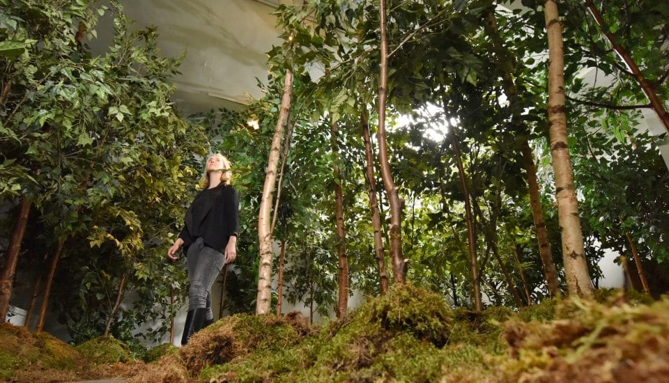 There's An Indoor Forest In Central London And The Air Is 80% Cleaner Than Outside