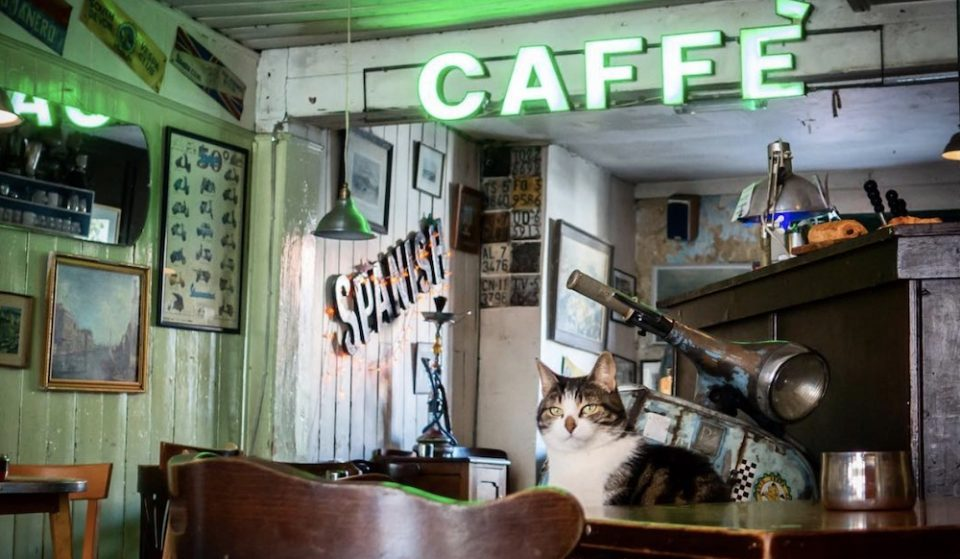 Waterloo's Cute Italian Cafe Is Simply Bellissimo • Scootercaffe
