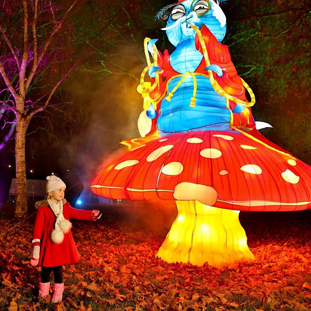 Alice In Winterland 1