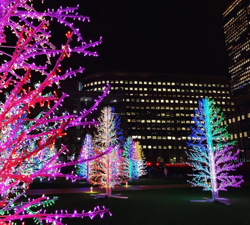 Winter Lights festival